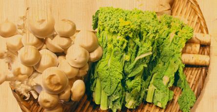 食材のイメージ写真、旬の野菜